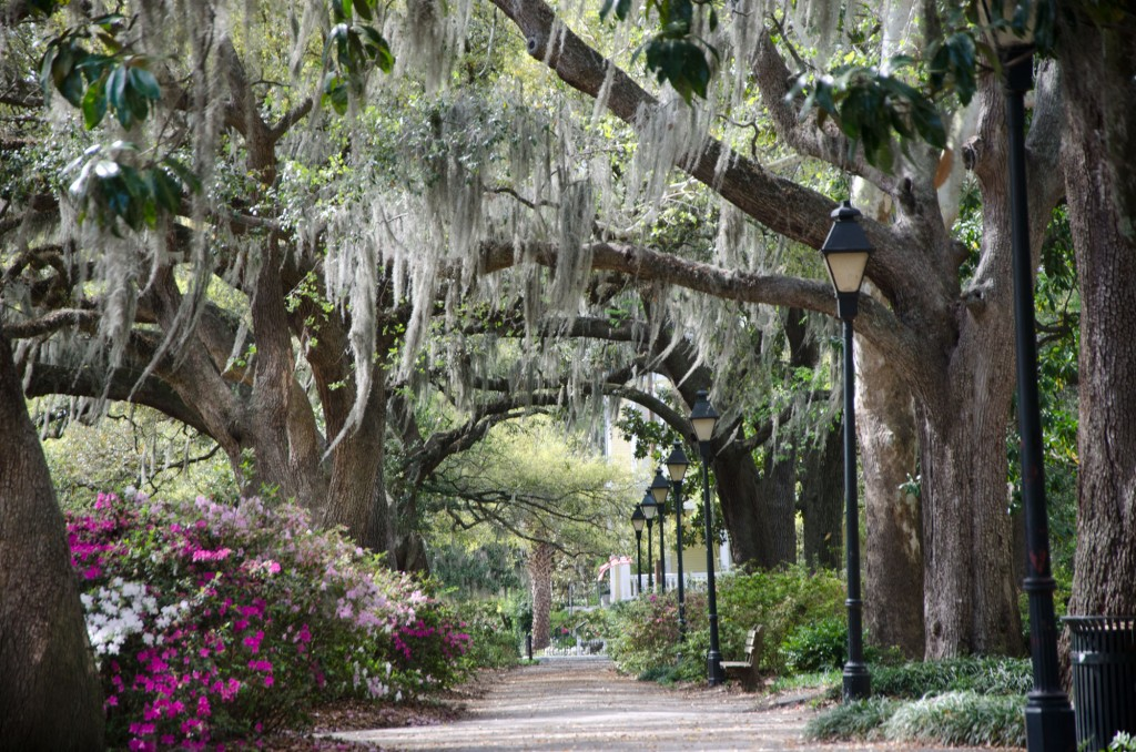 Historic Savannah and Your BluegreenTimeshare Vacation